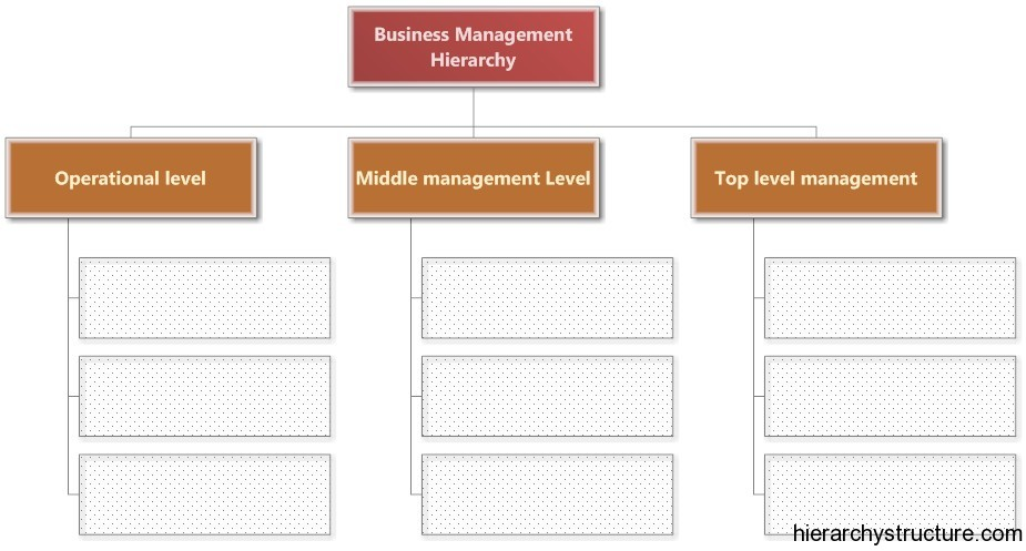 Business Management Hierarchy