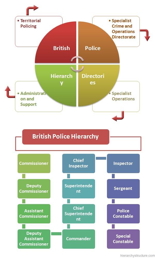 British Police Hierarchy