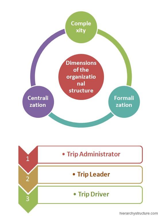 Sports Organization Hierarchy