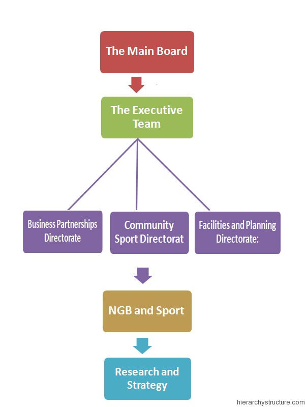 Sports Team Hierarchy