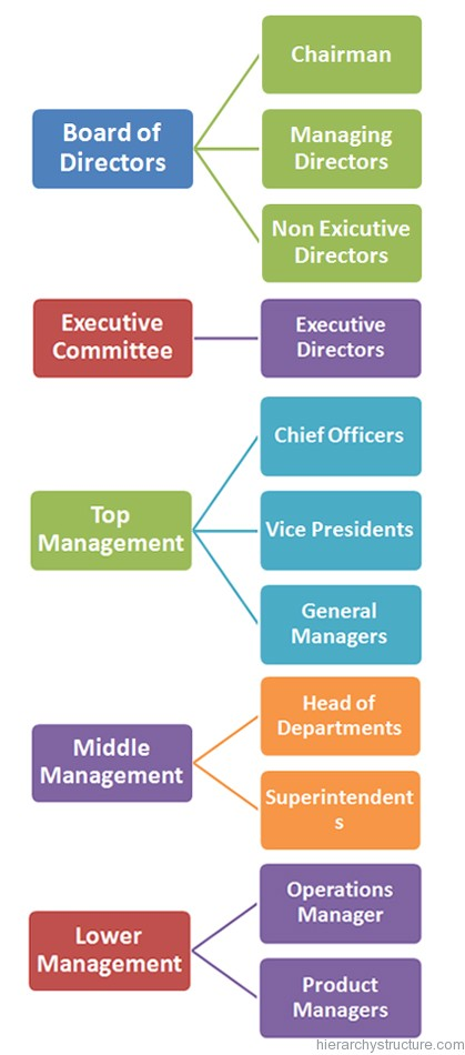 Business Organization Hierarchy