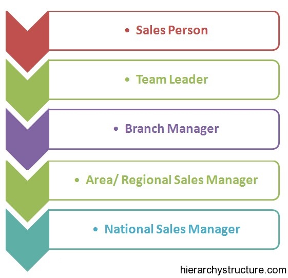 Sales Career Hierarchy
