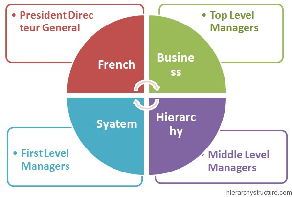 French Business Hierarchy