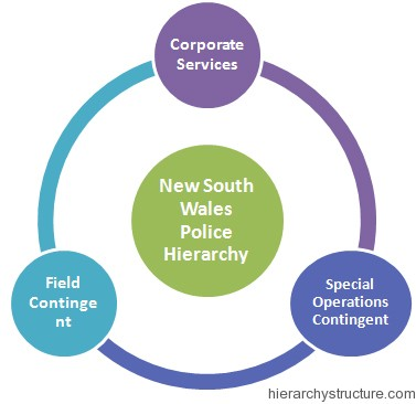 New South Wales Police Hierarchy1