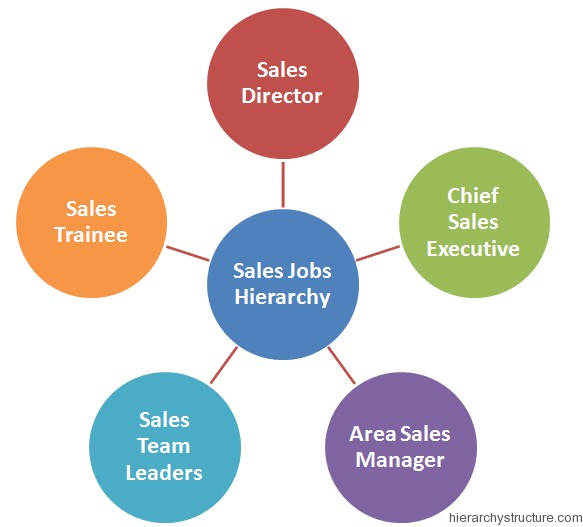 Sales Jobs Hierarchy