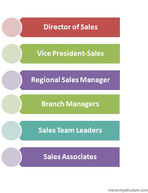 Sales Management Hierarchy