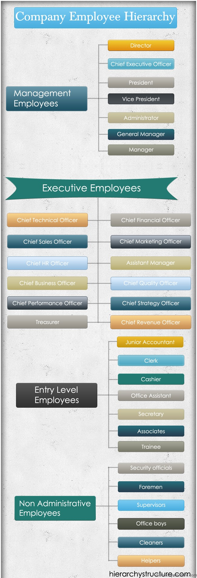 Company Employee Hierarchy