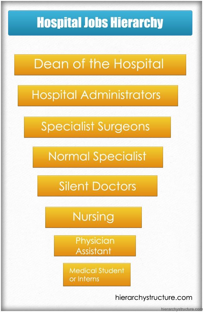 Hospital Jobs Hierarchy