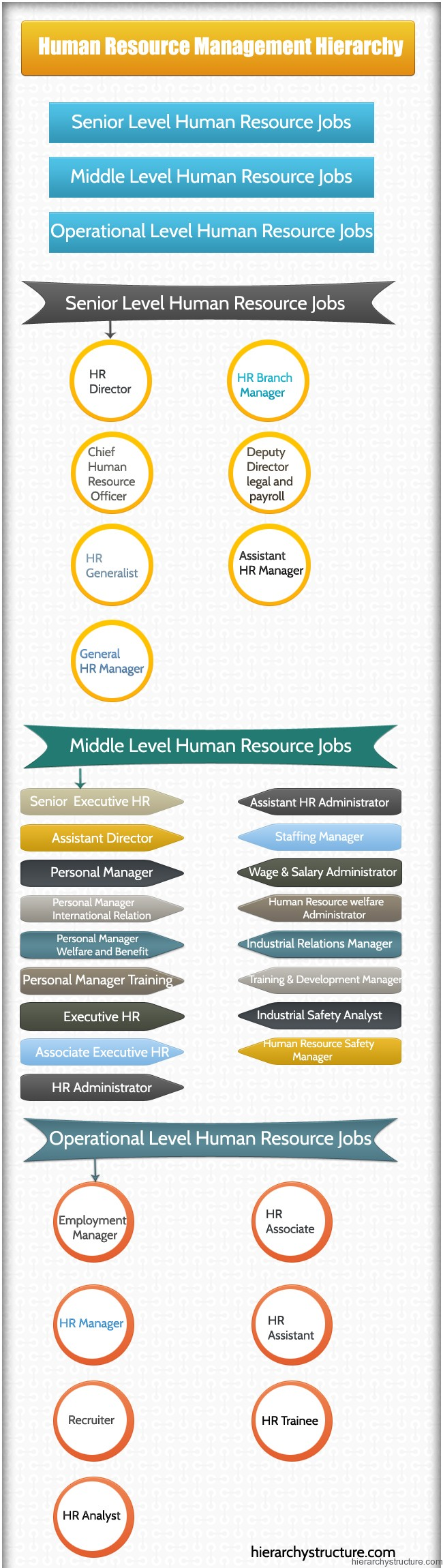 Human Resource Management Hierarchy