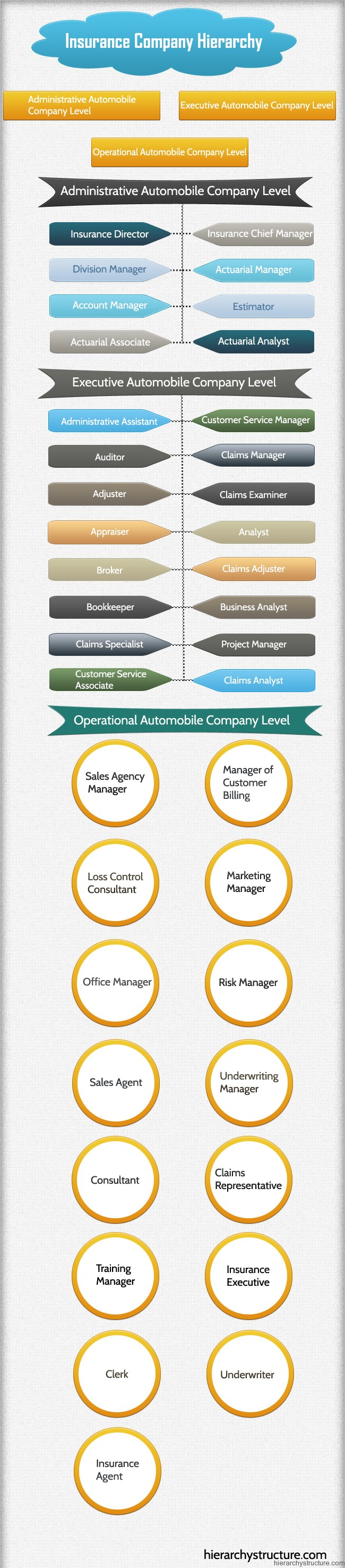Insurance Company Hierarchy