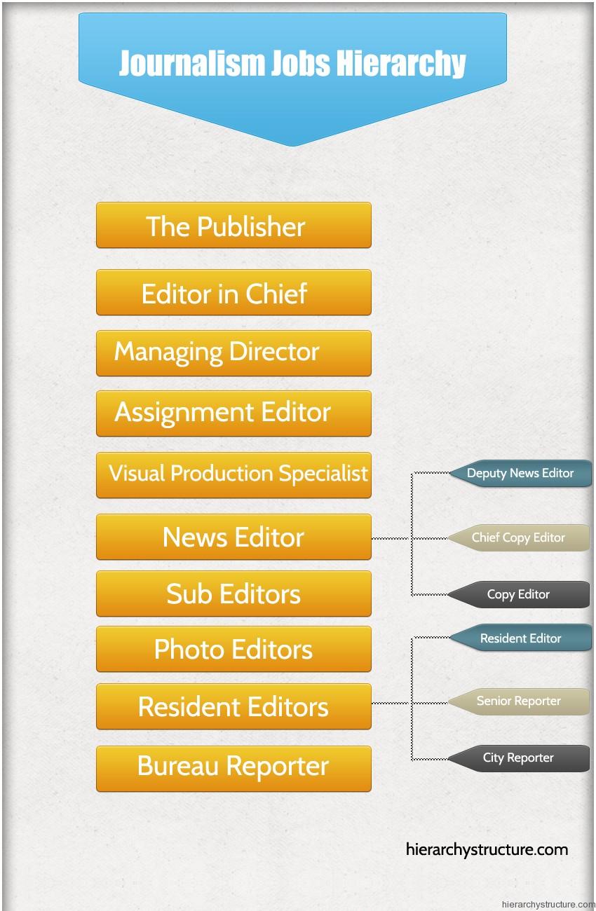 Journalism Jobs Hierarchy