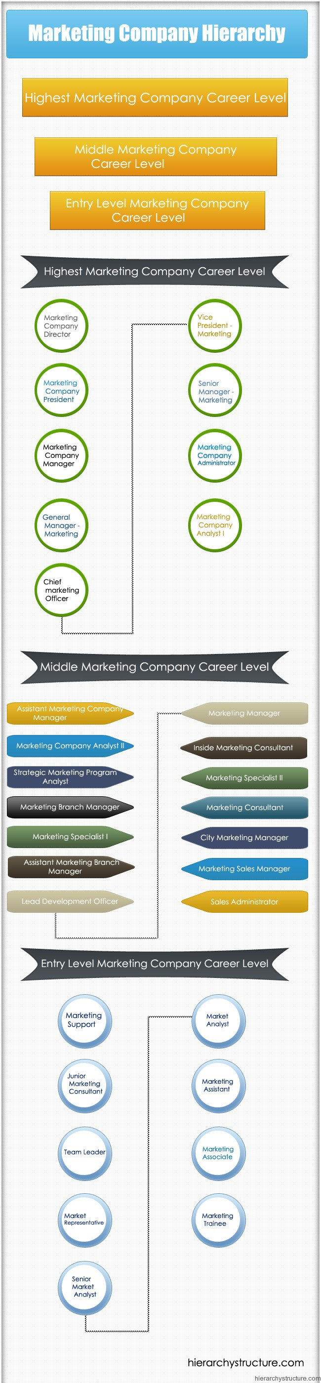 Marketing Company Hierarchy
