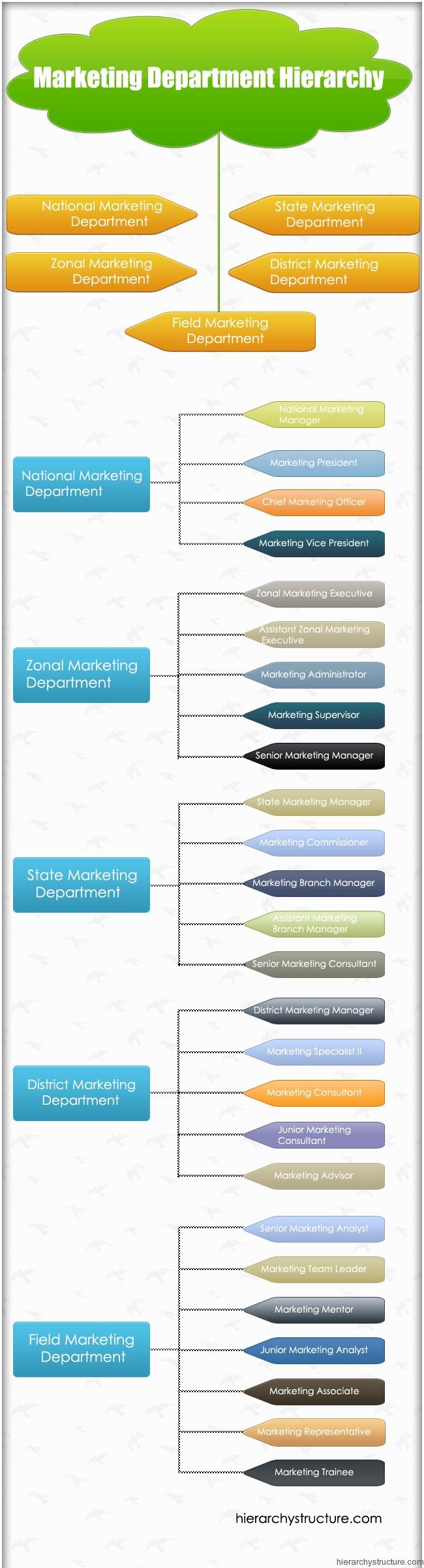 Marketing Department Hierarchy