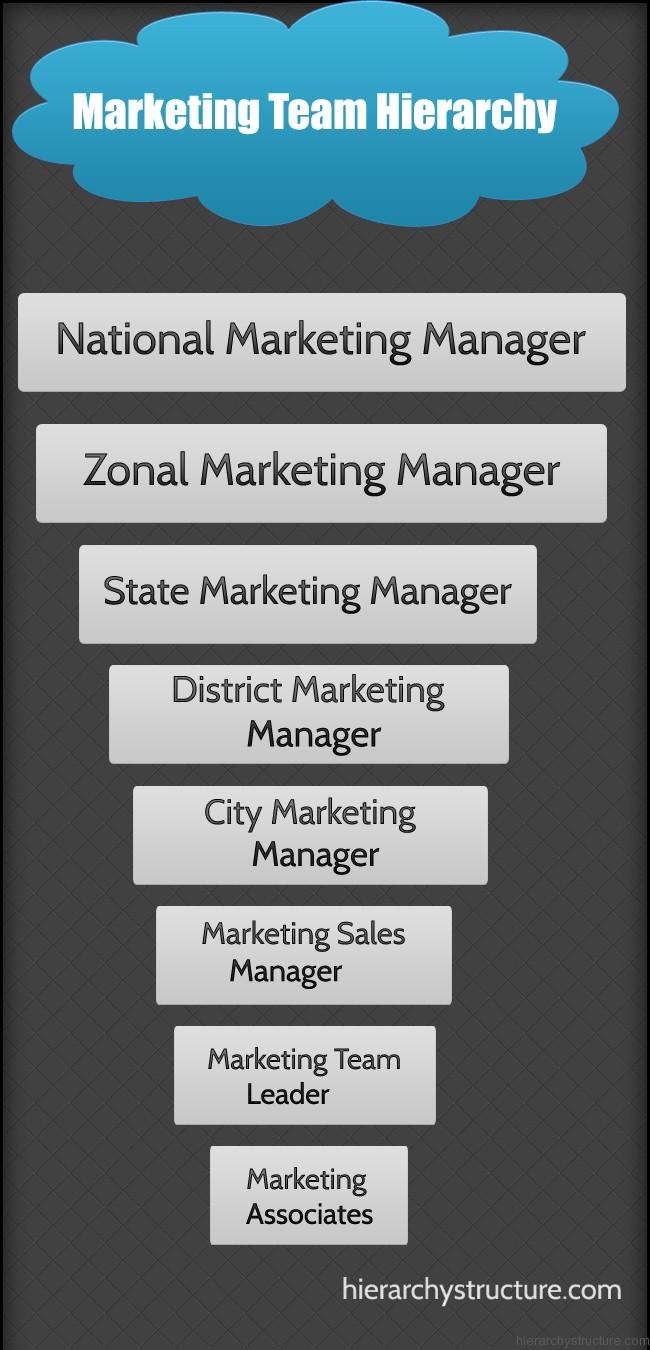 Marketing Team Hierarchy