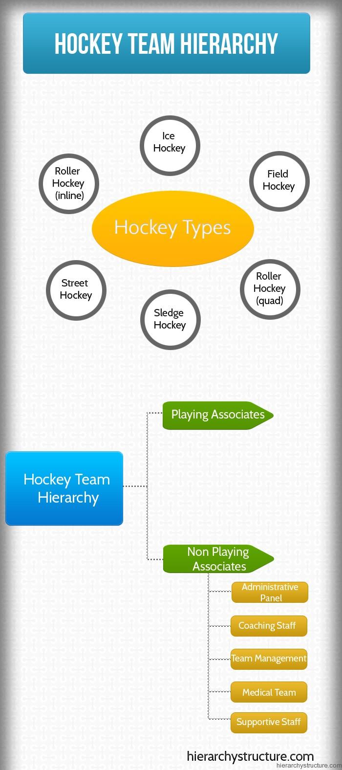 Hockey Team Hierarchy