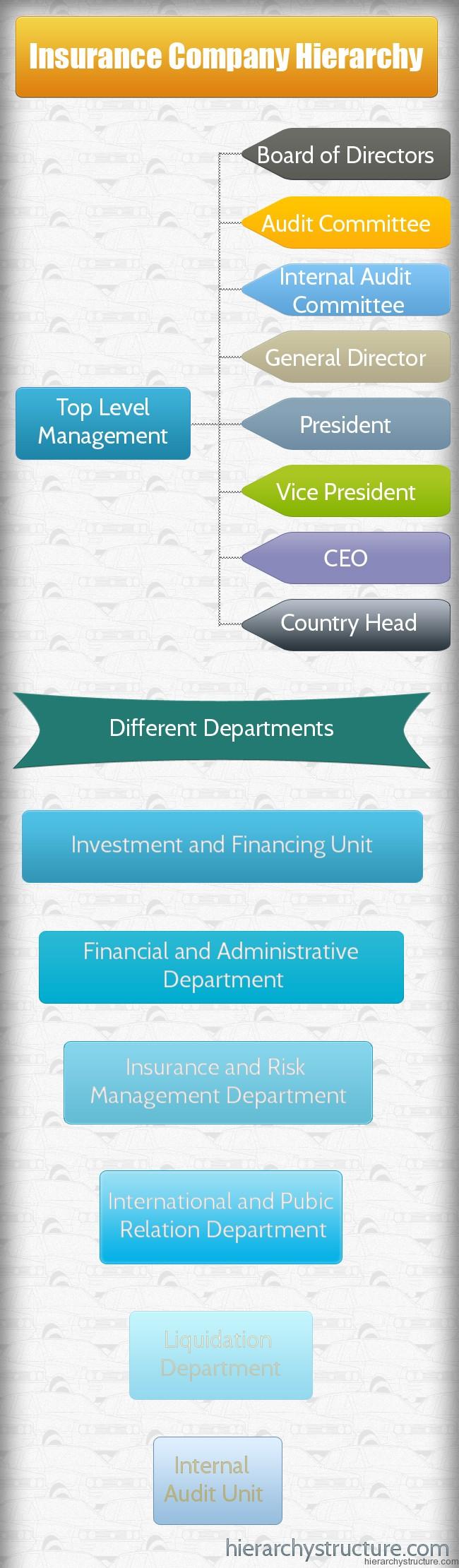 Insurance Company Hierarchy
