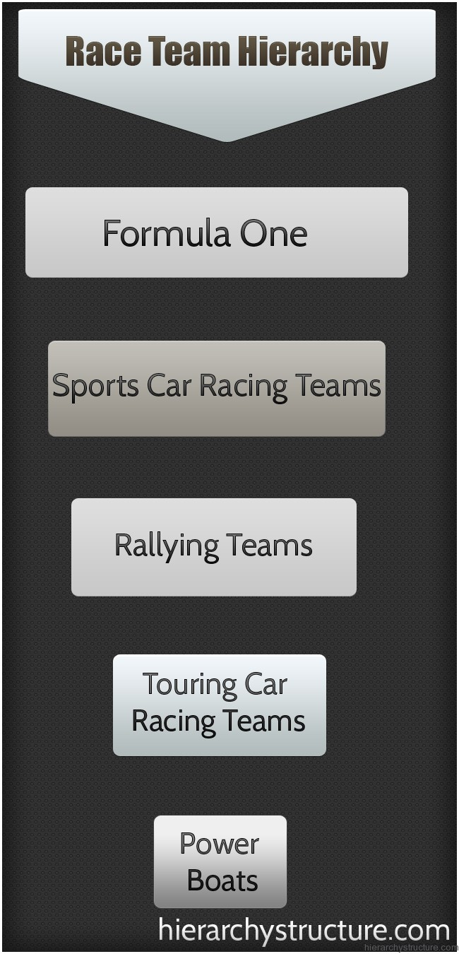 Race Team Hierarchy