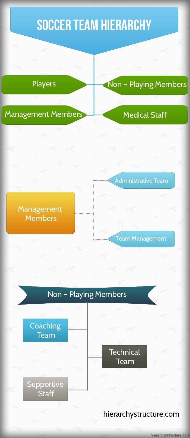 Soccer Team Hierarchy