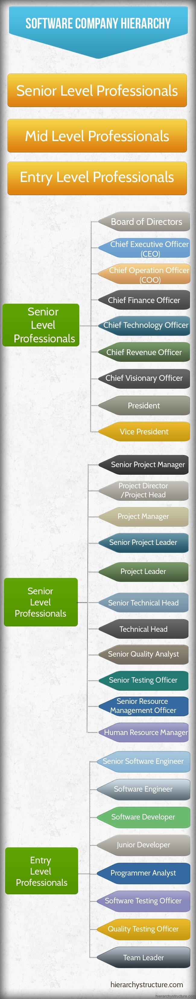 Software Company Hierarchy