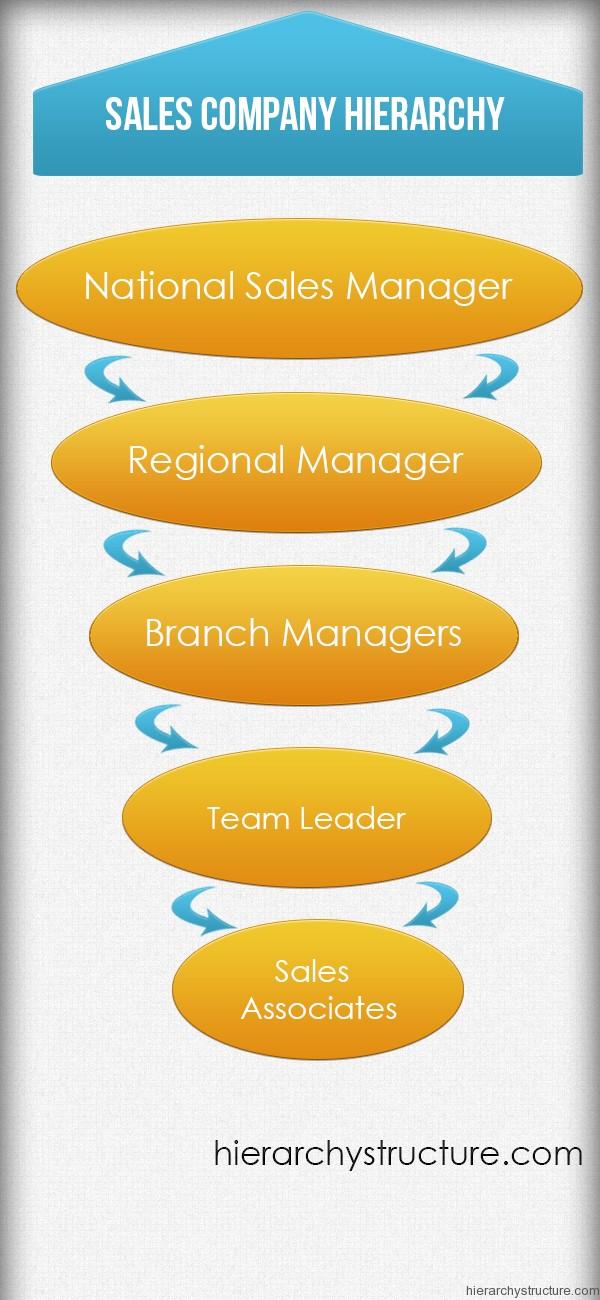 Sales Company Hierarchy