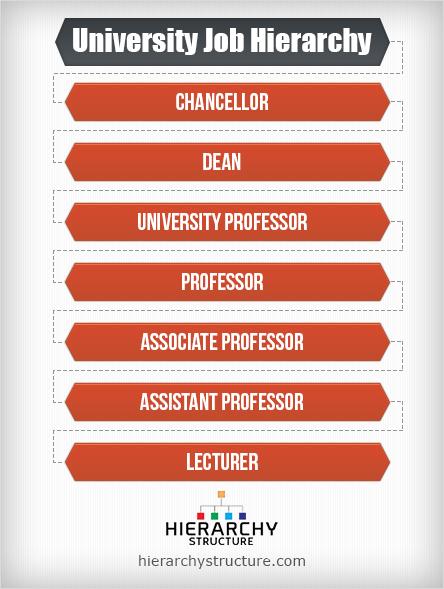 university job hierarchy