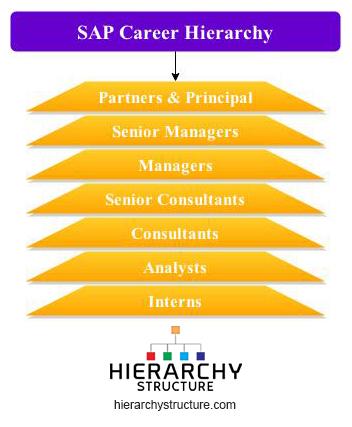 Sap Career Hierarchy | Sap Designation Hierarchy