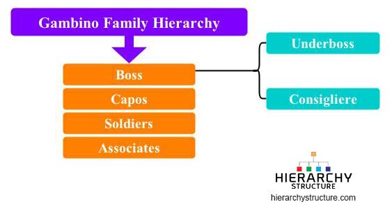 gambino family hierarchy