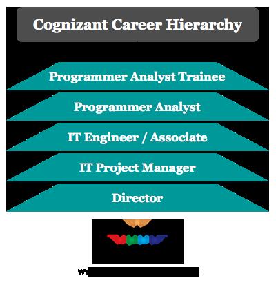 Cognizant career hierarchy
