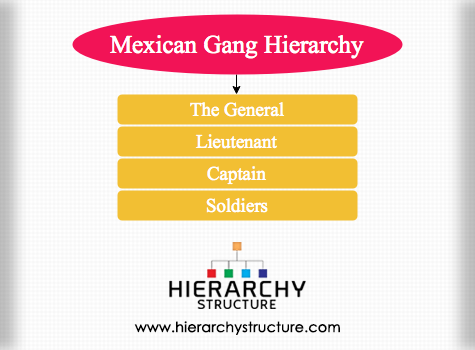 Mexican Gang Hierarchy