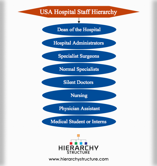 USA Hospital Staff Hierarchy
