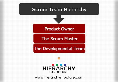 Scrum team hierarchy