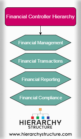 Financial Controller Hierarchy