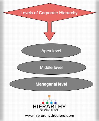 Levels of Corporate Hierarchy