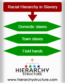 Racial Hierarchy in Slavery