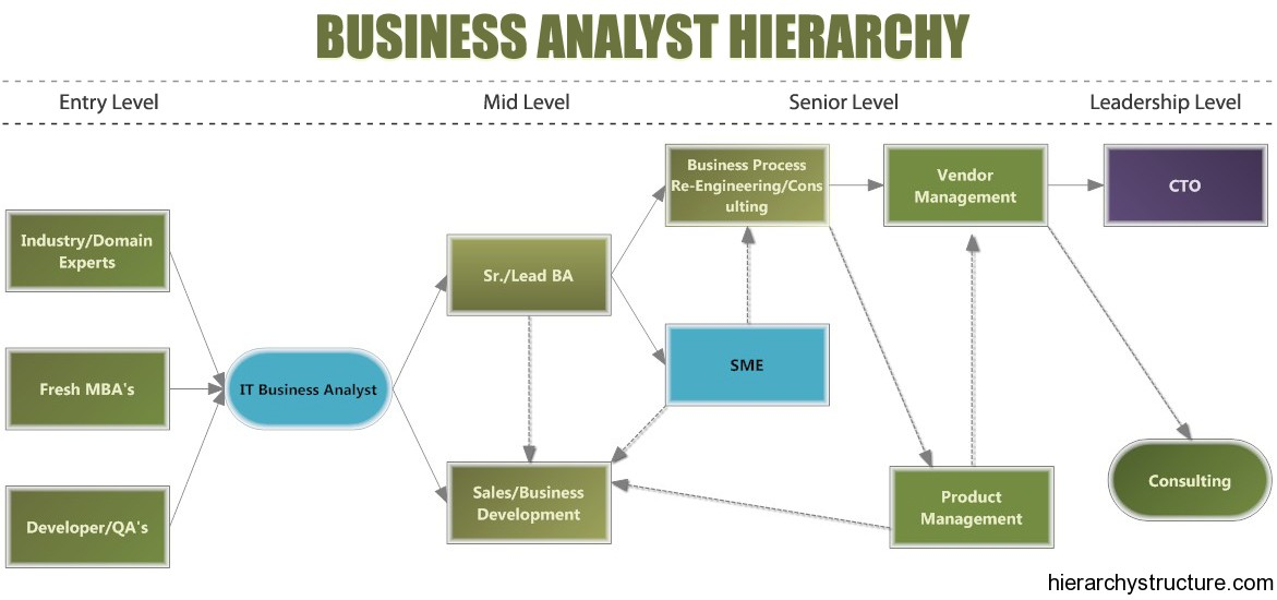Business Analyst Hierarchy Designation Hierarchy