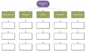 Business Executive Hierarchy