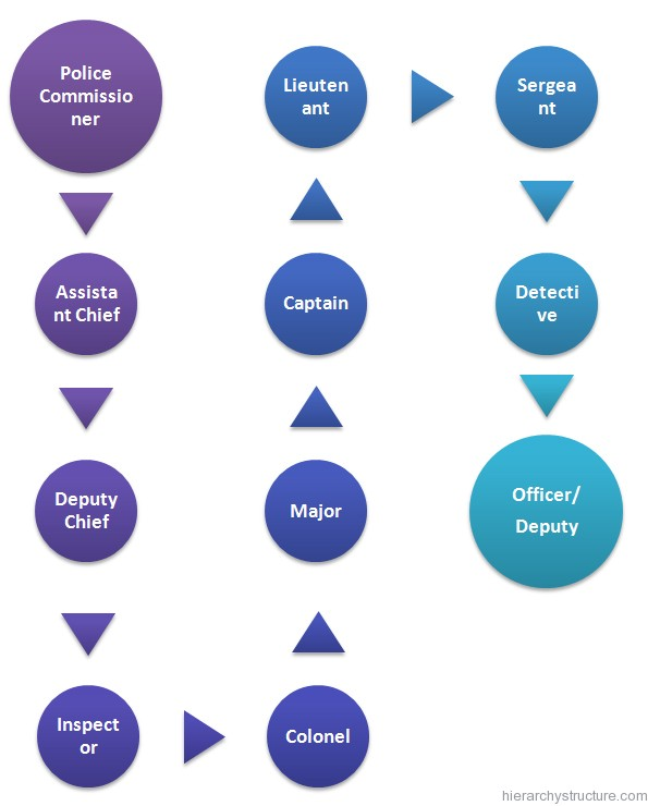 Law Enforcement Ranks >> American Police Hierarchy Police In Hierarchy Structure