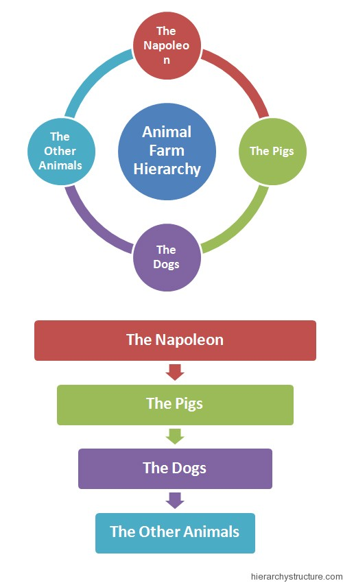 Animal Farm Hierarchy