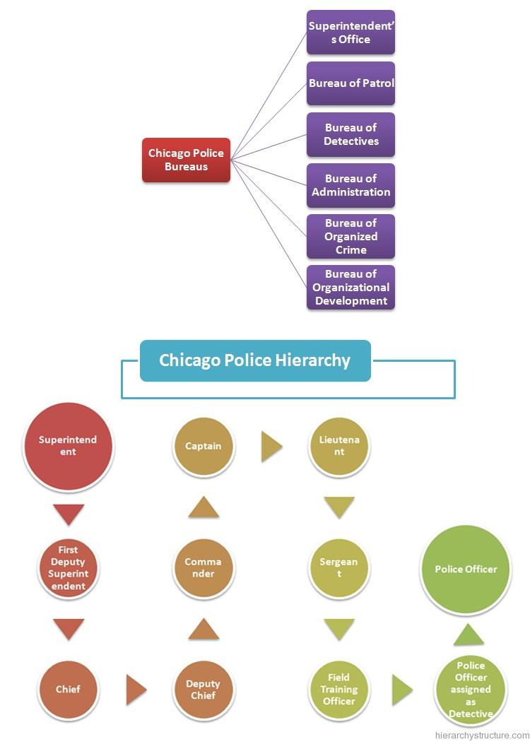 Chicago Police Hierarchy