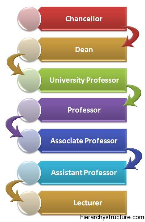 Academic Career Hierarchy
