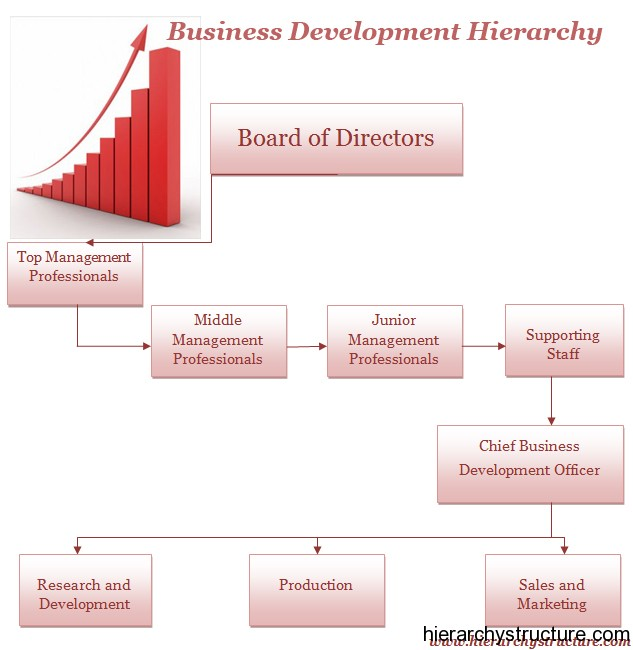 Business Development Hierarchy