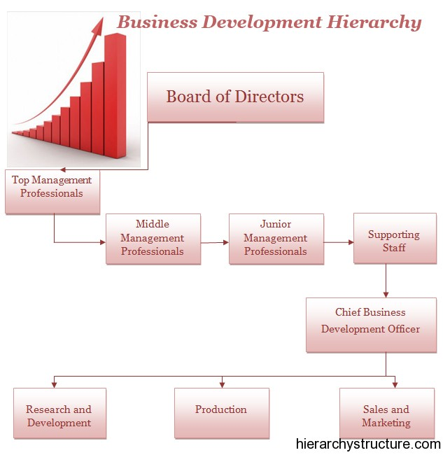 Business Development Hierarchy