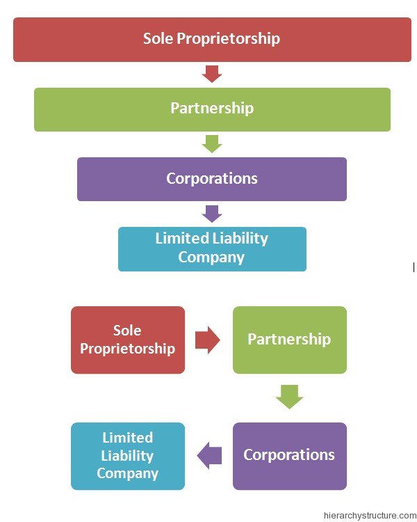 Corporate Structure Hierarchy