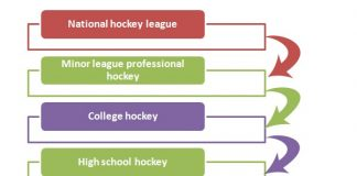 Hockey League Hierarchy