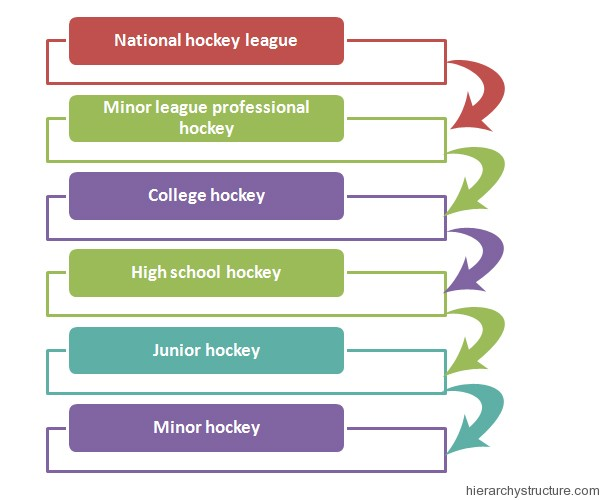 Hockey League Hierarchy Structure Hierarchy System