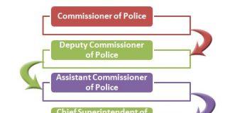 Hong Kong Police Force Hierarchy