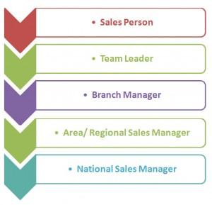 Sales Career Hierarchy