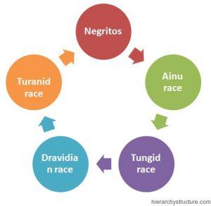 Asian Racial Hierarchy