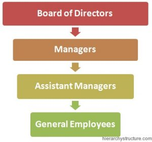 Business Administration Hierarchy