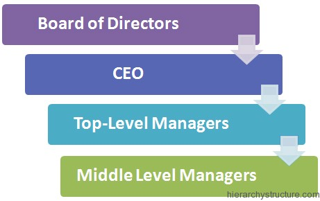 Corporate Development Hierarchy